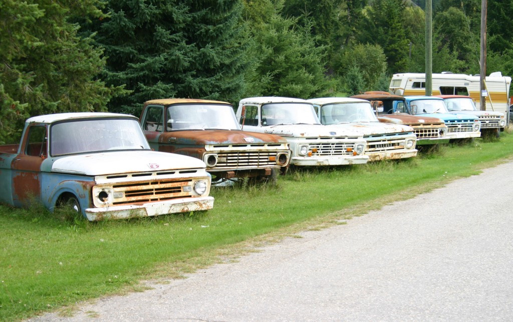 Old Ford Trucks In BC